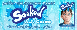 VBT_TourBanner_Soaked_option1