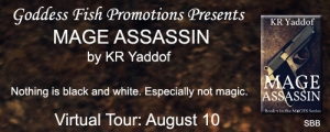 SBB_TourBanner_MageAssassin copy