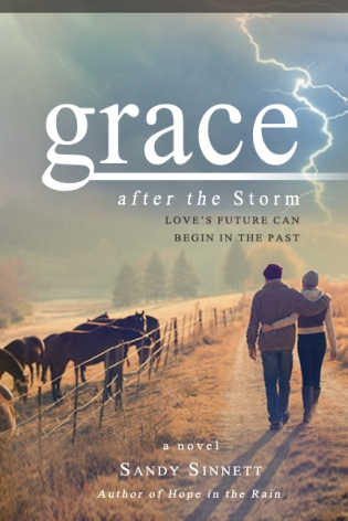MediaKit_BookCover_GraceAfterTheStorm