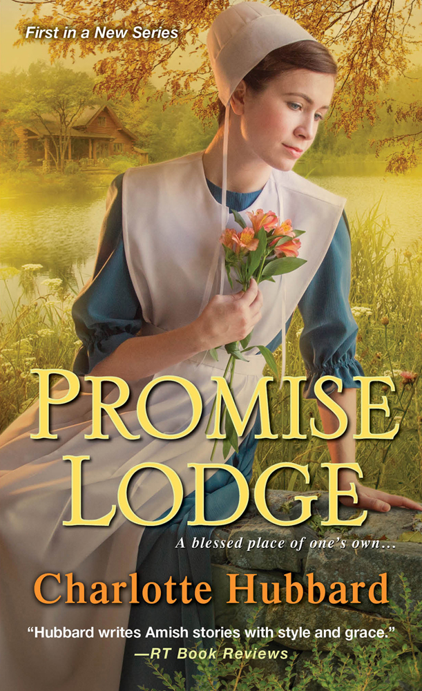 MediaKit_BookCover_PromiseLodge
