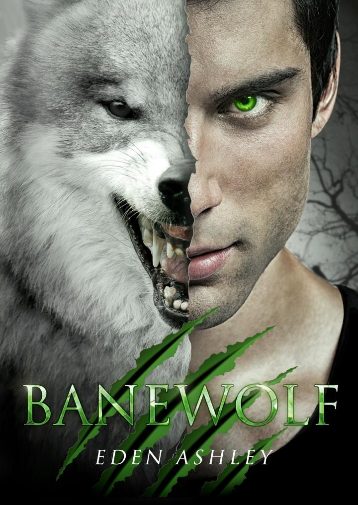 MediaKit_BookCover_Banewolf