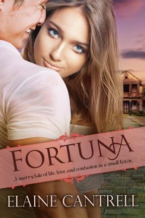 MediaKit_BookCover_Fortuna