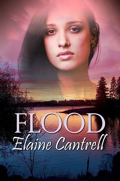 BookCover_Flood-WEB96-2