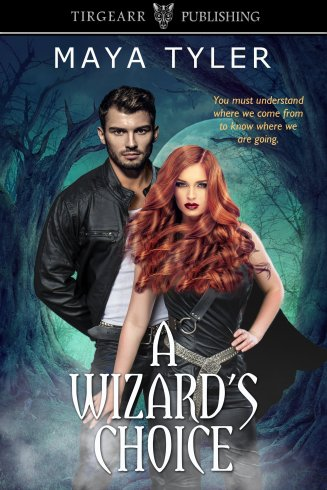 Cover_A Wizard's Choice